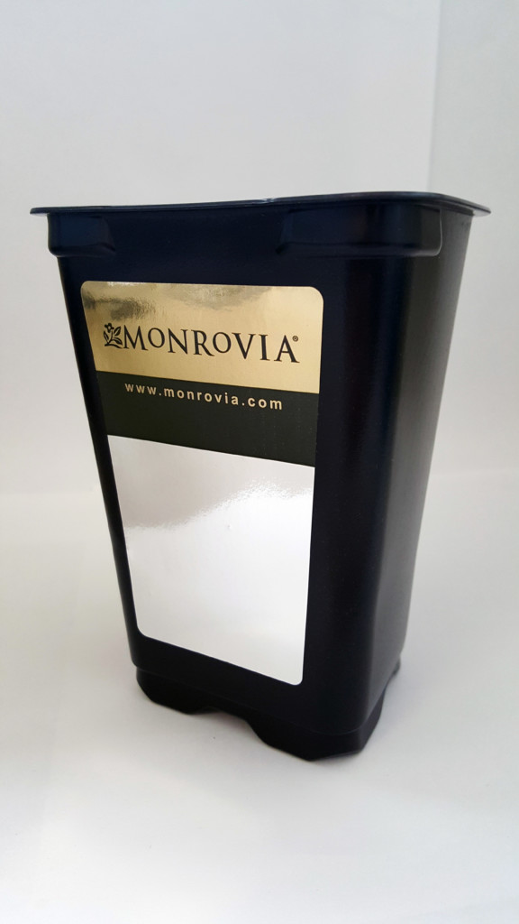Monrovia Label by Great Lakes Label