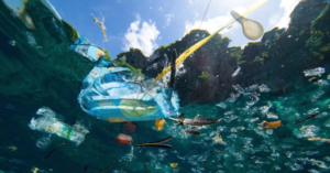 plastic packaging in the ocean, changes to come in the environment, sustainable packaging